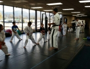 Corona Karate and Muay Thai Classes